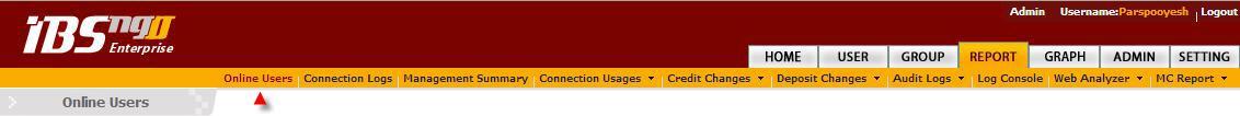 Report-online user.jpg